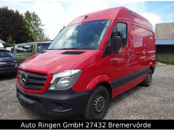 Mercedes-Benz Sprinter 313 CDI Blue Efficiency Kasten Hoch  - микроавтобус